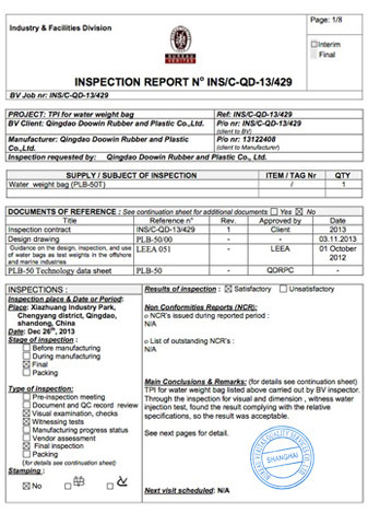 BV Inspection Certificate